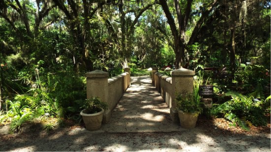 Sugar Mill Botanical Gardens bridge